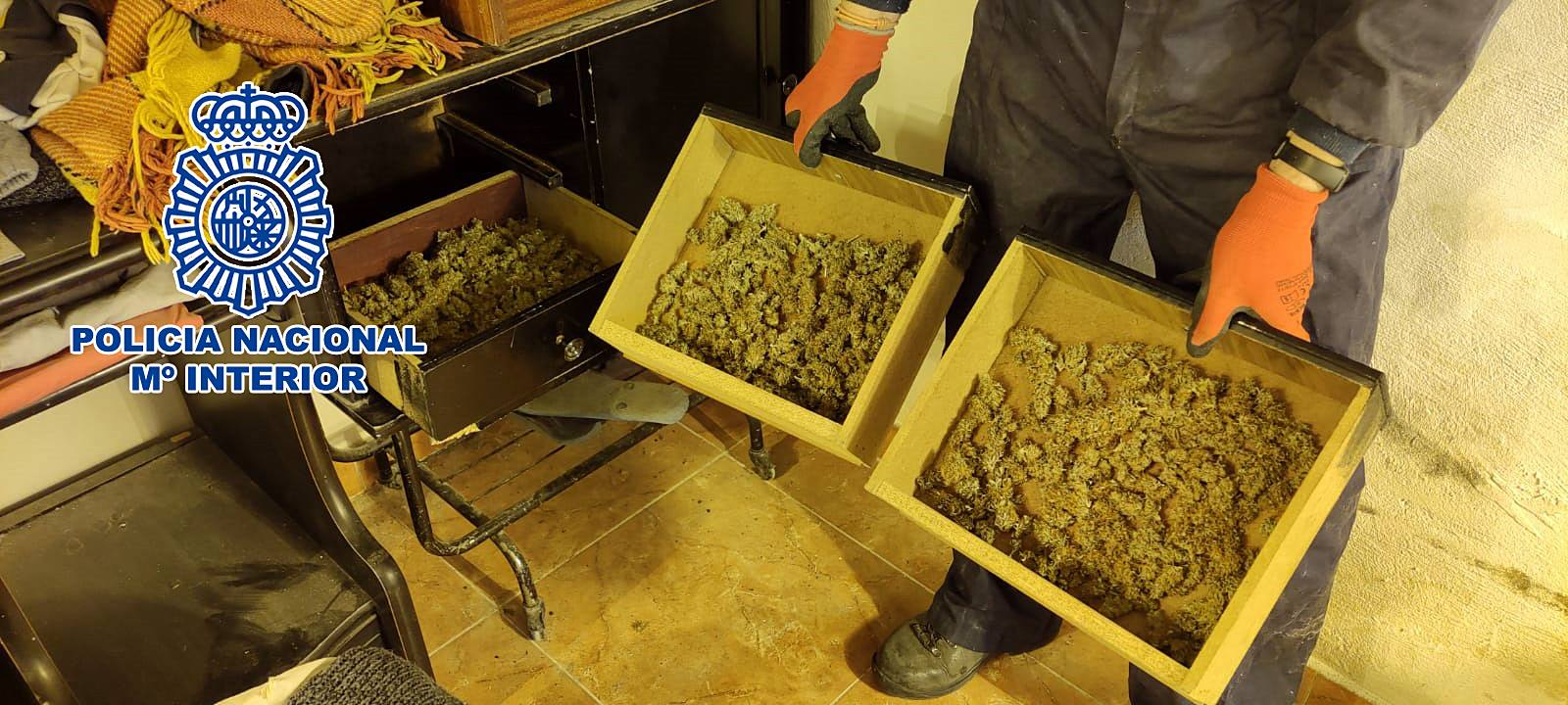 marihuana en el salón