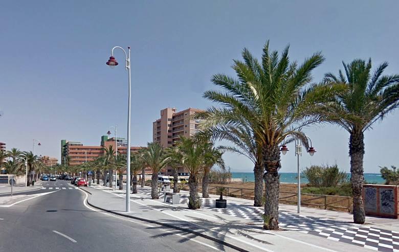 El Ayuntamiento saca a concurso un contrato para podar 8.000 palmeras de la vía pública y evitar así los problemas que genera la caída de dátil