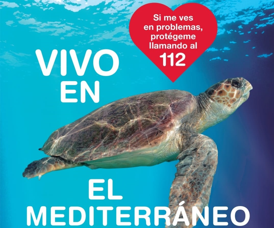 Tortugas en el Mediterráneo